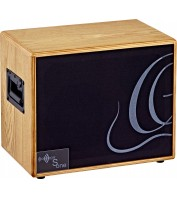 ORTEGA acoustic amplification S ONE