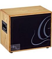 Ortega acoustic amplification S TWO