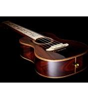 Tenor ukulele ORTEGA RU-25TH-TE