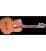 Klassikaline kitarr Ortega R180