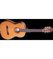 Classical guitar Ortega R220