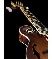 Ortega mandolin RMFE100AVO