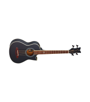 Acoustic Bass Guitar Ortega D-WALKER-BK