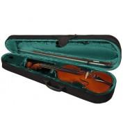 Violin Case Hora Student