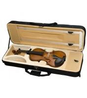 Violin Case Hora Prof