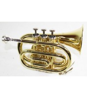 Bb Pocket Trumpet with case
